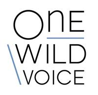 One Wild Voice - Brand Consulting & Management