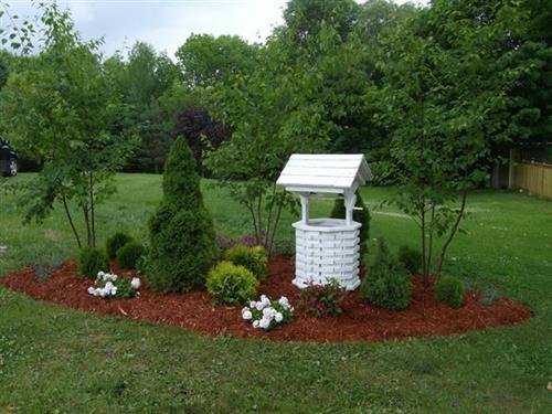 A country style garden