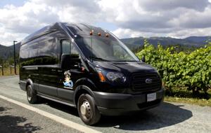 MyGo Tours and Transportation