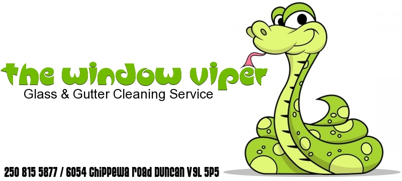 The Window Viper Glass & Gutter Cleaning Service
