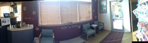 A panoramic view of the clinic