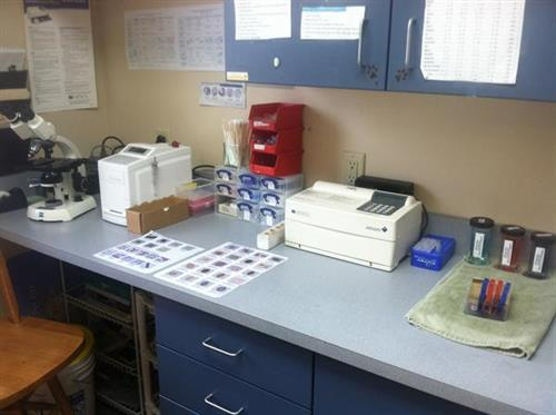 A picture of the lab area