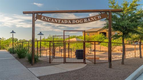 Gallery Image Dove_Mountain_Dog_Ranch_4.jpg