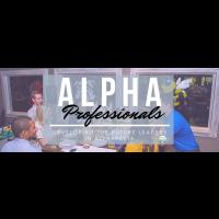 Alpha Professionals Virtual Event: Civic Engagement
