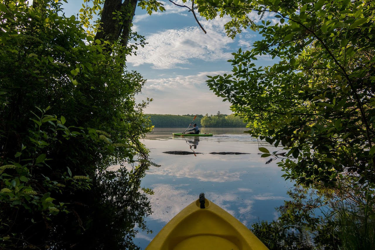 Discover the wonders of flat water paddling in Hopewell and Prince George VA