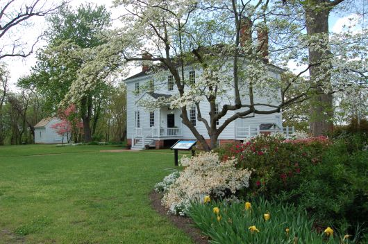 Tours & Tea During Garden Week in Virginia