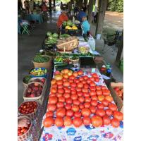 Wrap up this year's Virginia Farmers Market Week in Prince George County, Va!