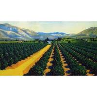University of La Verne Receives $500,000 Gift from Citrus Roots – Preserving Citrus Heritage Foundat