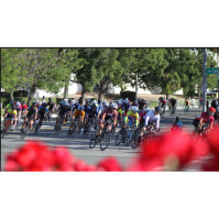Majestic Cycling to Host July Event