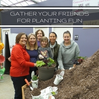 Gather Your Friends For A Planting Party