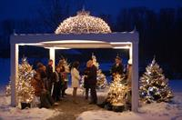 Winter gazebo ceremony.