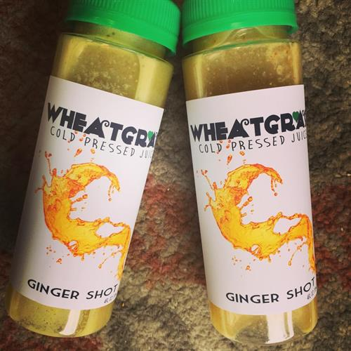 Our famous Ginger Shots have made an impact in our community and now are available to take home for daily shots!