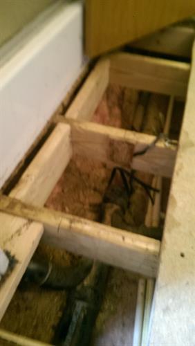 New framing repair from bathroom leak
