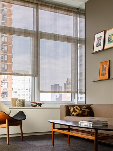 Style your living room with Roller Shades!