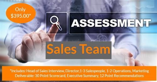 Sales Team Assessments