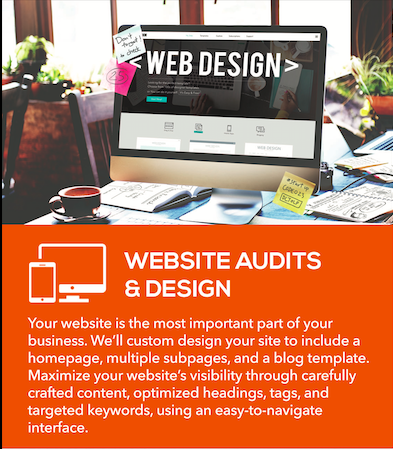 Website Design & Audit Services