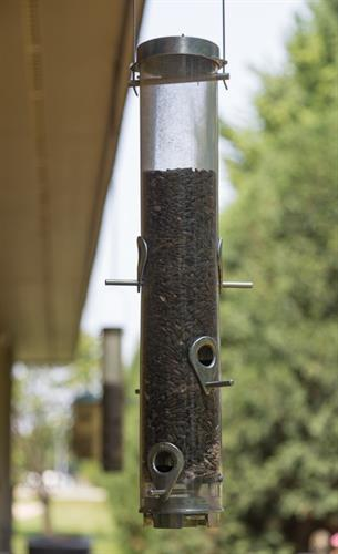 Bird feeders outside the patient rooms - birds love visiting us throughout the day!