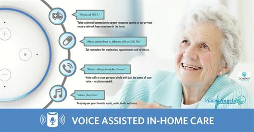VOICE ASSISTED IN-HOME CARE