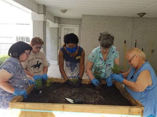 Camp Excursion Activity: Gardening