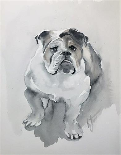 Gallery Image bulldog_2_(2).jpg
