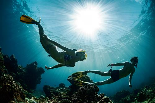 Scuba and snorkeling trips