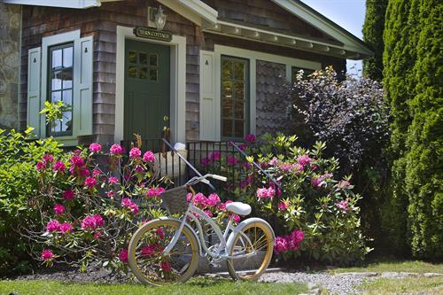 Tern Cottage