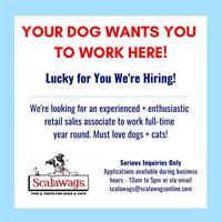 Scalawags Pet Boutique