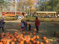 Pumpkin Patch Trolley