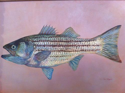 original oil paintings, fish