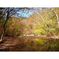 Lower Howard's Creek - Fall Colors Hike Part II