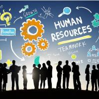 Human Resource Council Steering Committee