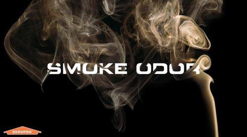 Gallery Image smoke_odor.jpg