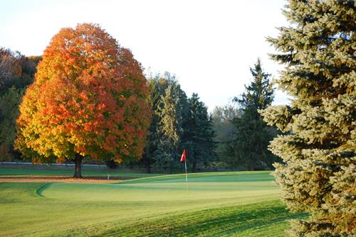 8th green in the fall