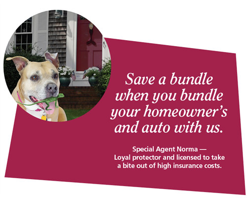 Gallery Image Special-agent_Norma-bundle-auto-home.png