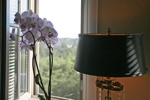 Gallery Image Sake_Room_5.jpg