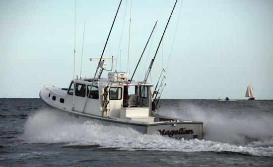 Adventure with Magellan Sportfishing