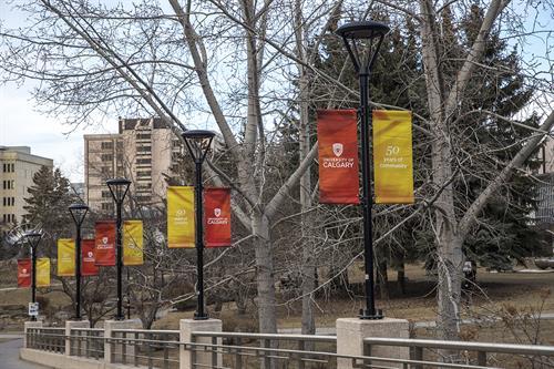 U of C Pole Banners