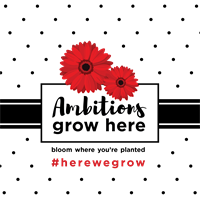 Ambition Performing Arts Inc. - Airdrie