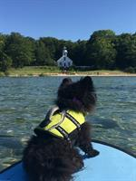Everyone enjoys the view of the lighthouse from the water