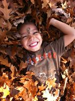 Gallery Image child_in_leaves(1).JPG