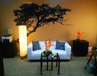 Affinity Tree