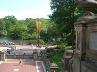Experience a plaza in Central Park, NYC