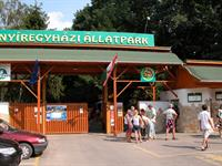 Experience a day at the zoo in Nyiregyhaza, Hungary