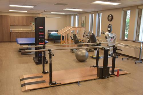 Full service Physical Therapy
