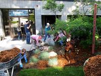 A team of employees work together to clean up our front yard.