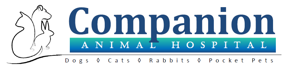 Companion Animal Hospital of Traverse City