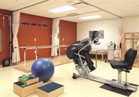 Leelanau rehab room