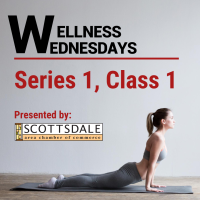 Wellness Wednesday: Series 1, Class 1: Yoga with Julie!