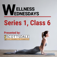 Wellness Wednesday: Series 1, Class 6: Yoga with Julie!