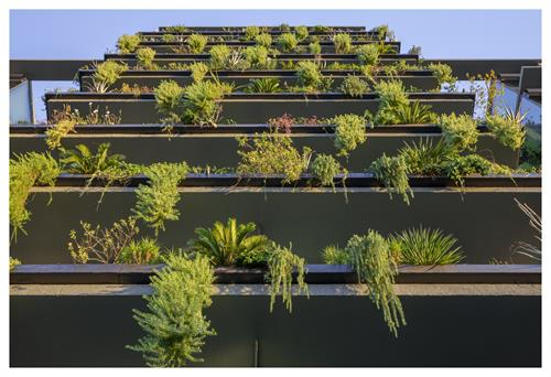 Optima Kierland Apartments | Signature Vertical Landscaping